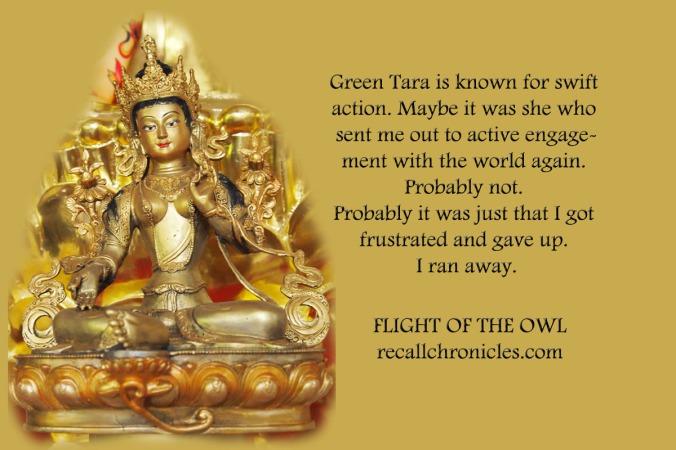 greentaradid